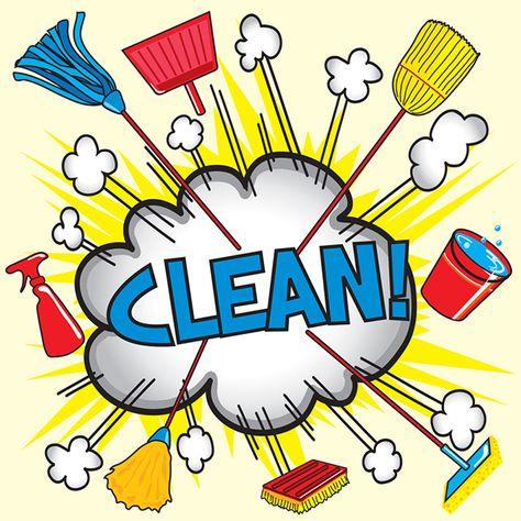 De Grote Dijkvogels schoonmaak